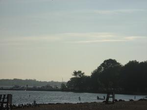 beach with birds2